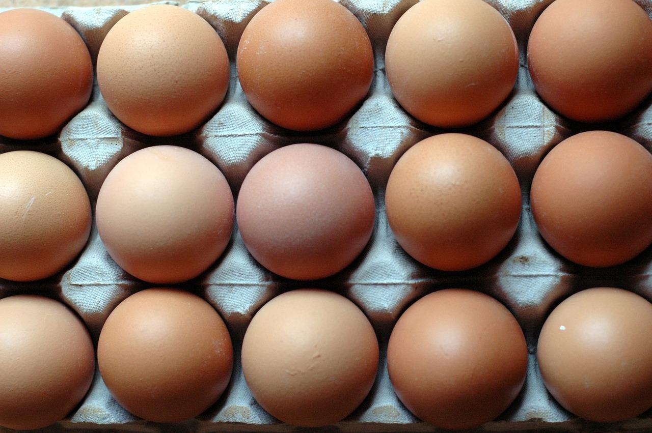 eggs-1668881_1280