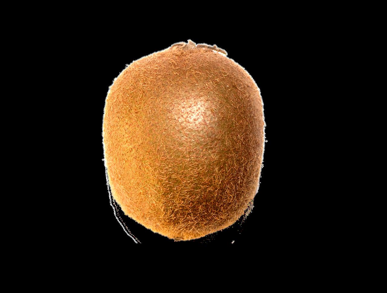 kiwi-1504984_1280